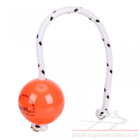 Top-Matic Fun Ball Orange for Staffy Training