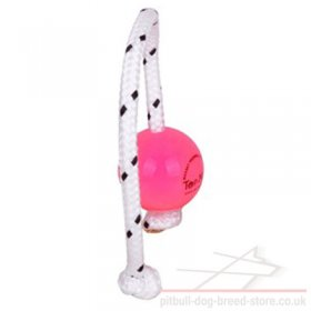 Top-Matic Fun Ball SUPER SOFT for Small Staffy and Puppy