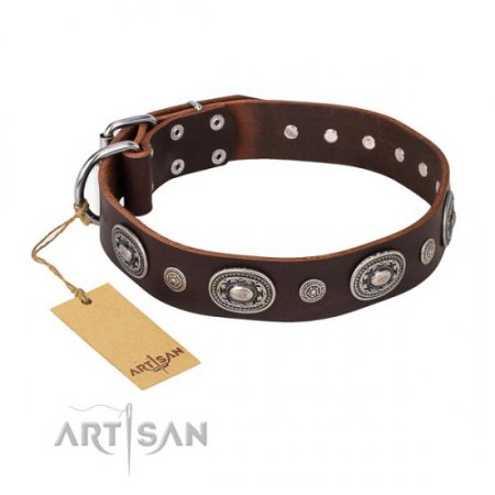 """Age of Beauty"" FDT Artisan Brown Leather Dog Collar"