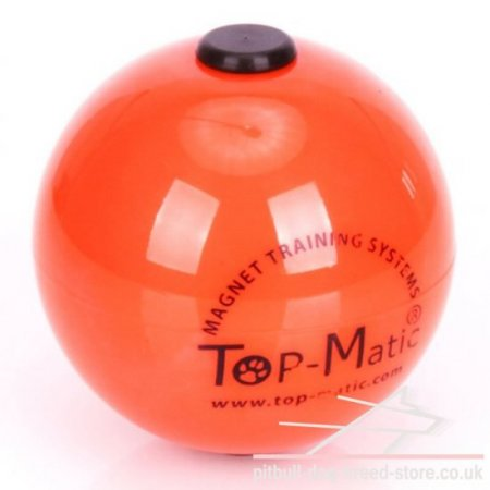Top-Matic Technic Ball with Inner Magnet for Staffy Training