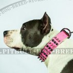 Cool Pink Dog Collar with Spikes & Round Studs for Amstaff