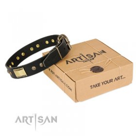 "Designer Pitbull Dog Collar ""Black Sun"" FDT Artisan"