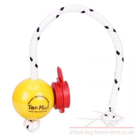 Top-Matic Fun Ball SOFT with Maxi Power-Clip for Small Staffy
