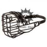 Antifreeze Staffy Wire Muzzle Covered with Black Rubber