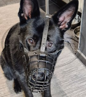 Wire Basket Cage Dog Muzzle Rubberized, Padded with Leather