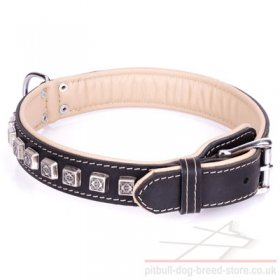 "Thick Leather Collar for Pitbull ""Cube"" Nappa Lined"