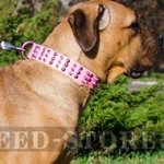 Cane Corso Collar Female, Spiked and Studded Pink Leather