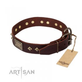 "Pitbull Leather Collar ""Loving Owner"" FDT Artisan"
