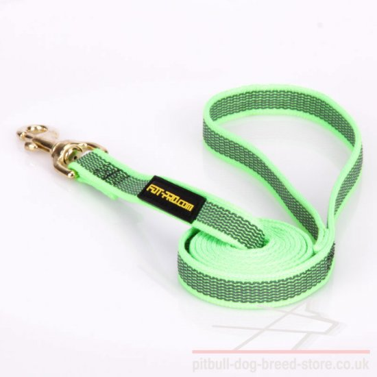 Leash for Pitbull of Green Nylon with Non-Slipping Rubber Lines