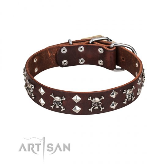 FDT Artisan Rock 'n' Roll Style Skull and Crossbones Dog Collar