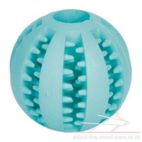 Dental Care Dog Toy with Menthol Flavour for Training