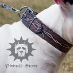 "Unique Dog Collar with ""Barbed Wire"" Painting for Bull Terrier"