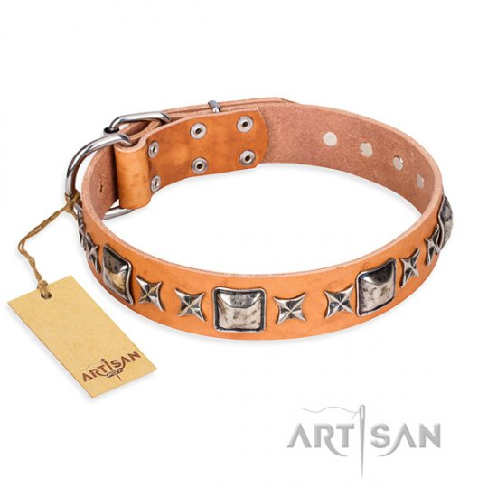 """Silver Chic"" FDT Artisan Pretty Dog Collar for Daily Walks"
