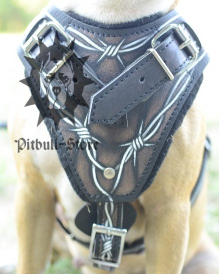 Leather Padded Dog Harness with Barbed Wire Design