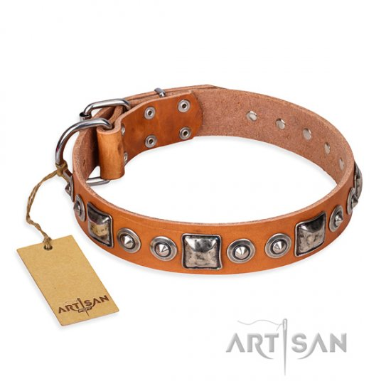 """Era of Future"" FDT Artisan Good Dog Collar of Tan Colour"