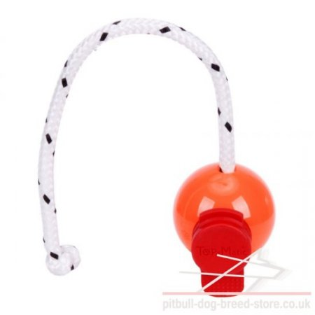 Big Hard Plastic Dog Ball with MAXI Power-Clip by Top-Matic