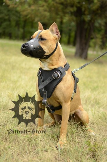 Bestseller! Protection Dog Harness for Stafford Attack Training