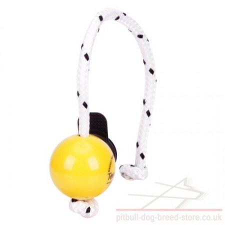Top-Matic Fun Ball SOFT with Multi Power-Clip for Small Staffy