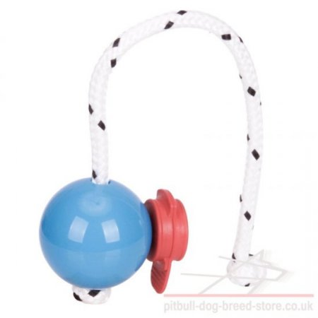 Top-Matic Magnet Trainingsball with MAXI Power-Clip for Staffy