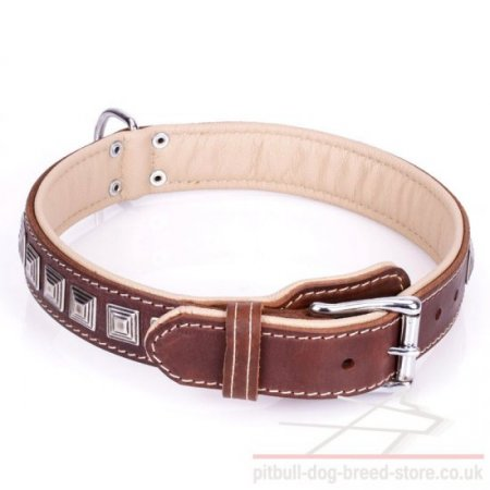 "Dog Collar for American Staffy and Pitbull ""Pyramid"" Brown Color"