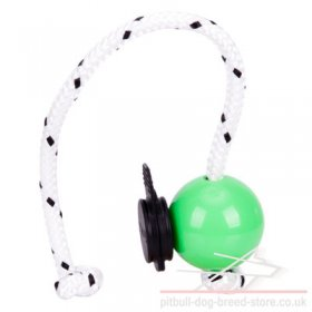Top Matic Magnetic Ball Mini with Multi Power-Clip for Staffy