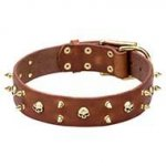Rockstar Dog Collar, Leather with Brass Spikes and Skulls