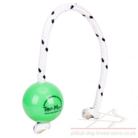 Top-Matic Fun Ball Mini for Small and Young Staffy
