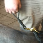 Dog Control Lead of Braided Design with Floating O-ring