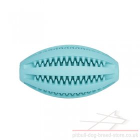 "Dental Health Dog Toy ""Denta Fun Rugby Ball"" for Staffy, Pitbull"