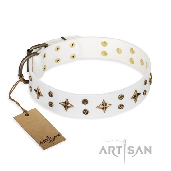 """Bright stars"" FDT Artisan Chic Dog Collar for Royal Staffy Girl"