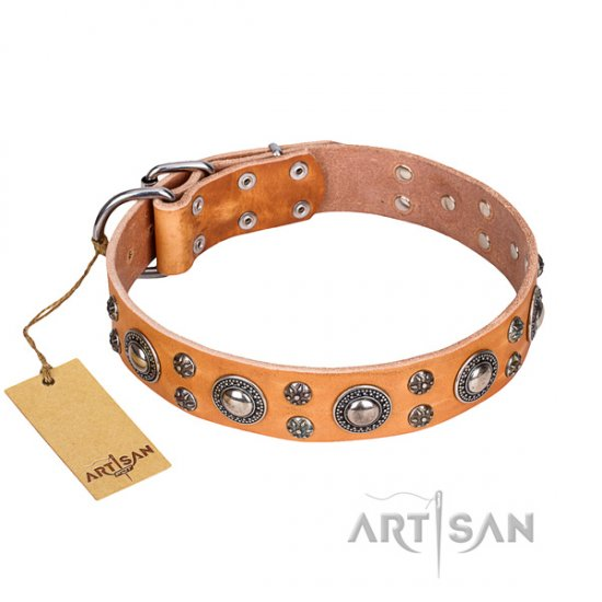"""Extra Sparkle"" FDT Artisan Tan Leather Dog Collar for Amstaff"