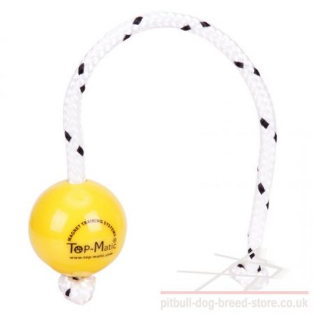 Top-Matic Fun Ball SOFT for Small Staffy Training