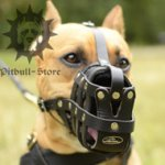 Bestseller! Staffordshire Bull Terrier Muzzle of Leather