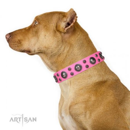 "Female Pitbull Dog Collar ""Rich Berry"" FDT Artisan"