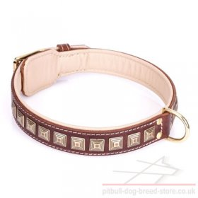 "Wide Pitbull Collar of Brown Leather ""Pyramid"" with Brass Studs"