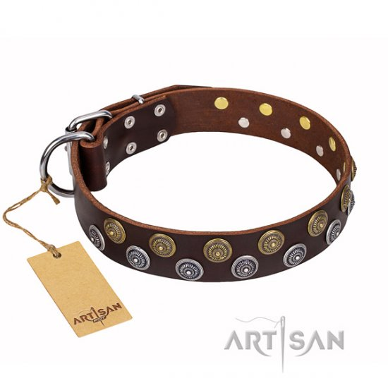 """Strong Shields"" FDT Artisan Brown Dog Collar with Conshos"