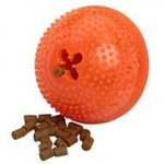 Large Dog Chew Toy with Treats Inside for Aggressive Chewers