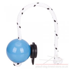 Top-Matic Magnet Training Ball with Multi Power-Clip for Staffy