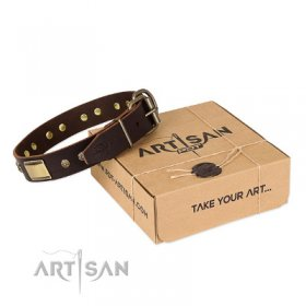 "Pitbull Leather Dog Collar ""Rich Fashion"" FDT Artisan"