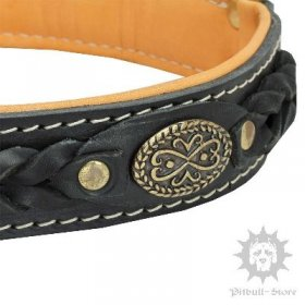 Bestseller! Thick Leather Dog Collar for Pitbull of Royal Design