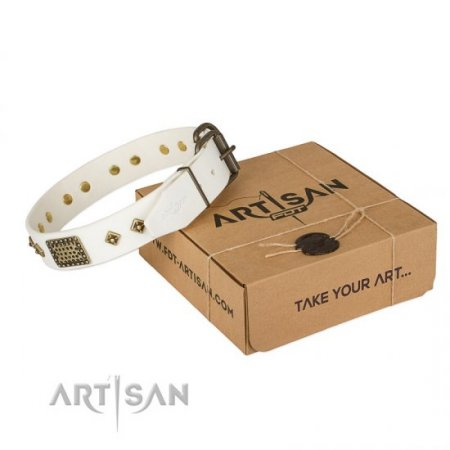 "Leather Dog Collar for Pitbull ""Snow-Covered Gold"" FDT Artisan"