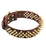 Startling Spiked Leather Dog Collar for Walks in Style