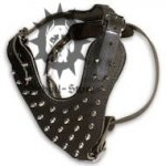 Best Spiked Leather Dog Harness UK