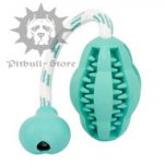 Dental Toy for Young and Adult Dogs, Fights Bad Breath