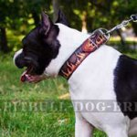"Unique Dog Collar with ""Flame"" Hand Painting for Amstaff"