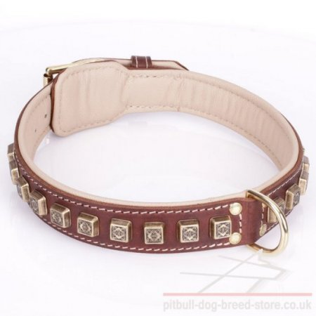 "Strong Dog Collar for Pitbull ""Cube"" of Brown Leather with Nappa"