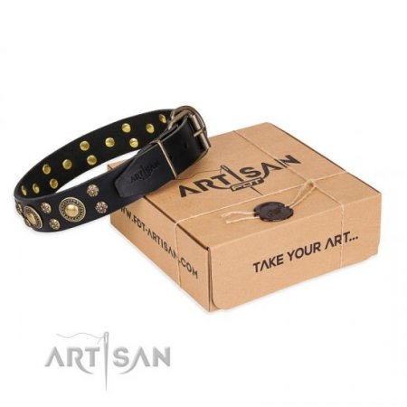 "Designer Pitbull Dog Collar FDT Artisan ""Baroque Chic"""