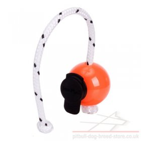 Dog Training Magnetic Ball with Multi Power-Clip Top-Matic