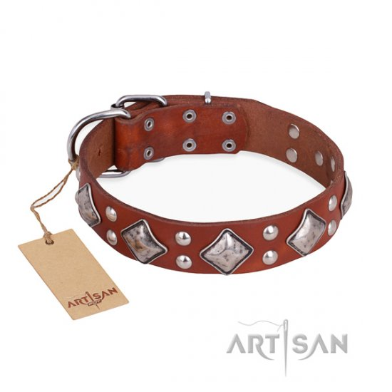 """Magic Squares"" FDT Artisan Tan Studded Dog Collar for Pitbull"