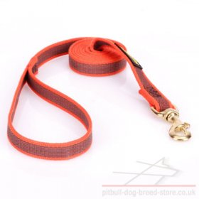 Leash for a Pitbull of Orange Nylon with Non-Slip Rubber Rows